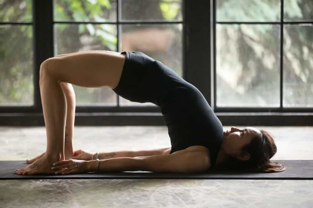 Bridge yoga pose - Sethu Bandha Sarvangasana