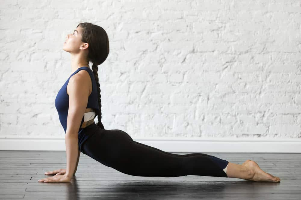 Upward facing dog - Urdhva Mukha Svanasana