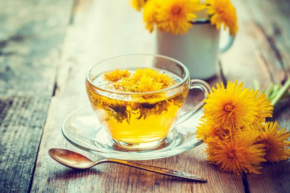 : A Cup of Refreshing Dandelion Tea