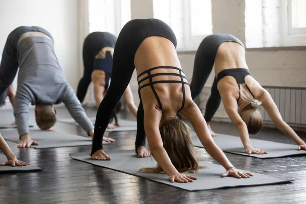 Group class for yoga in downward dog position