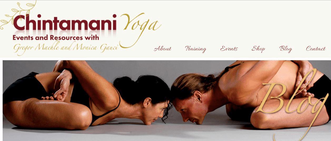 Chintamani Blog