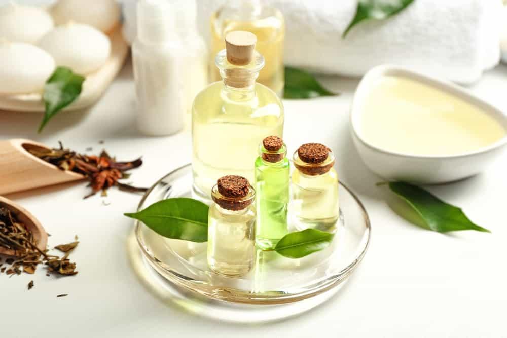 Tea Tree leaves and bottles of essential oil.