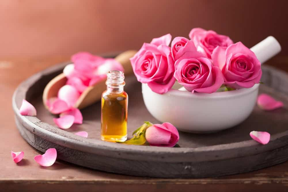 Rose flowers and a bottle of essential oil.