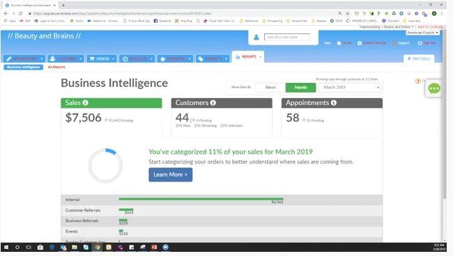 Screenshot of MINDBODY Software Business Intelligence