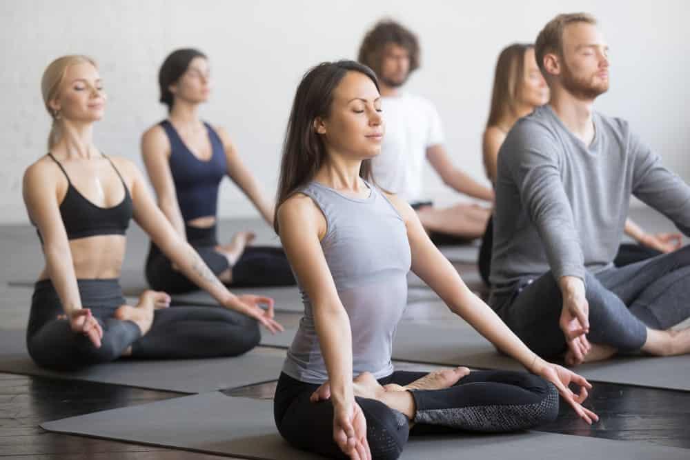 Yogis practicing Vinyasa yoga.