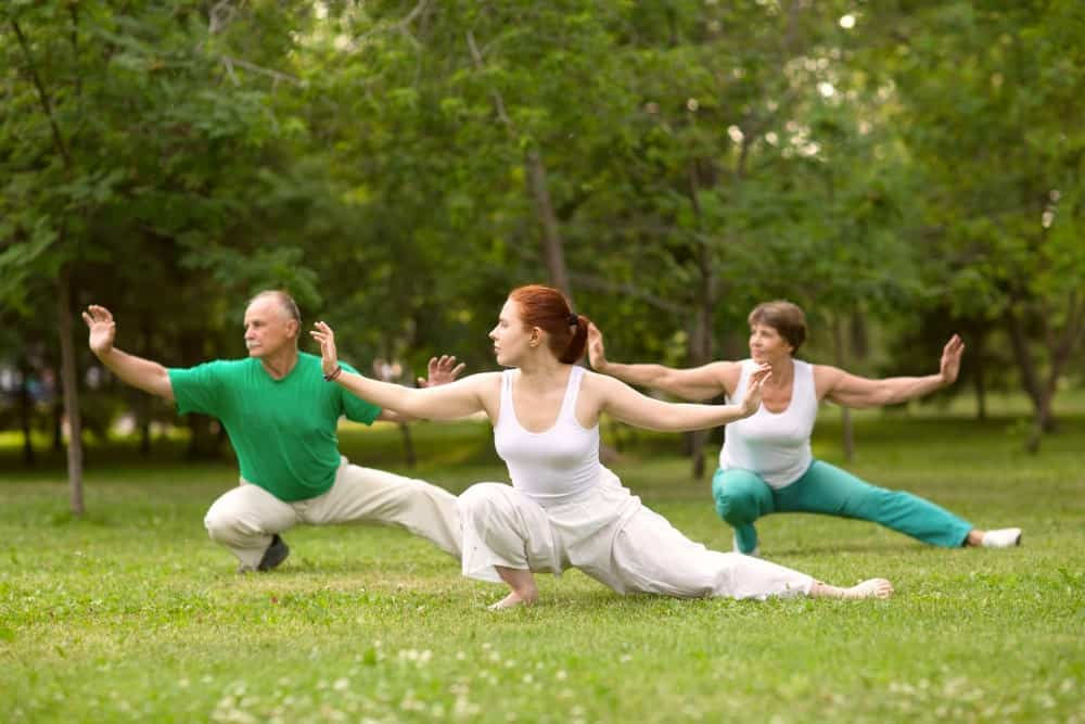 A group of people practicing Tai Chi in the park.