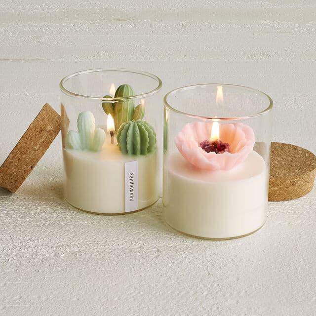 A couple of terrarium candles
