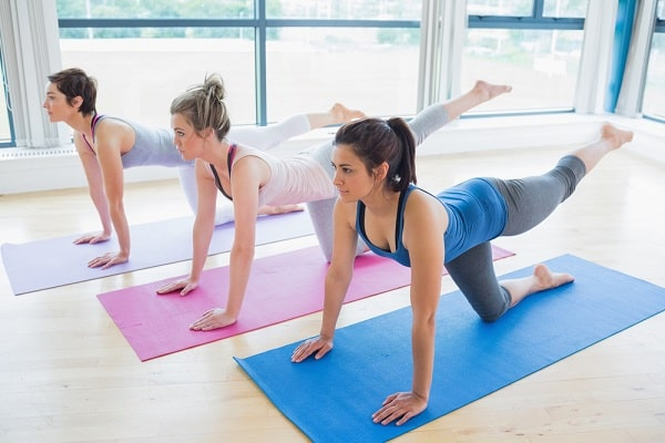 Women doing a yoga pose on their yoga mats at an indoor gym.
