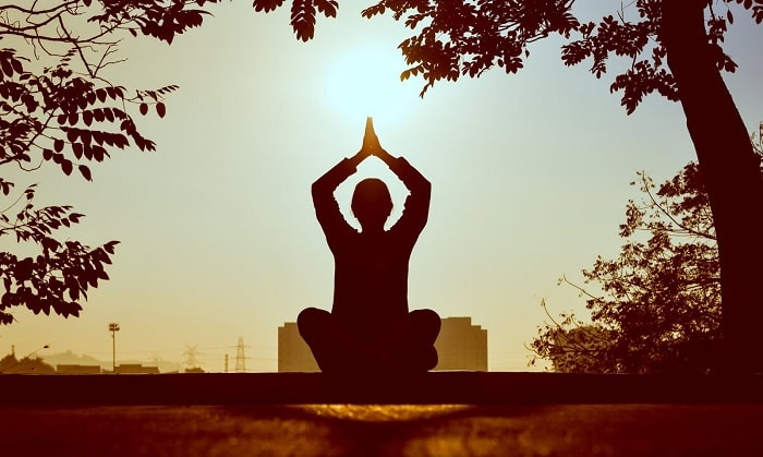 A silhouette of an individual in a sitting yoga pose with arms raised and hands pressed together, saluting the sun on a clear day under the shade of a tree.