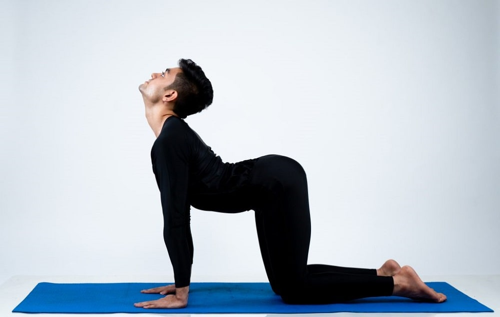 A male yoga practitioner doing Cat Pose for his indoor yoga session to alleviate back pain and improve mobility.